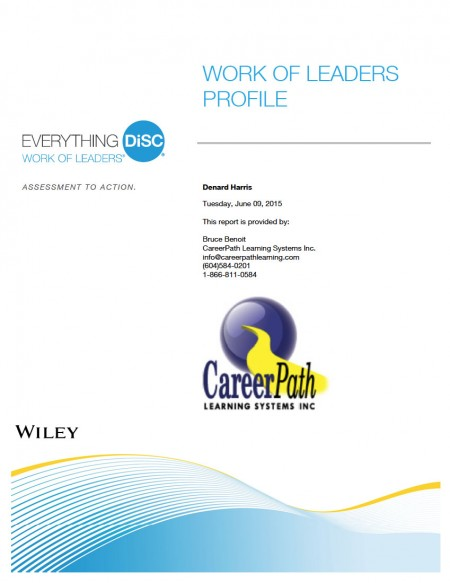 DiSC Work of Leaders Profile